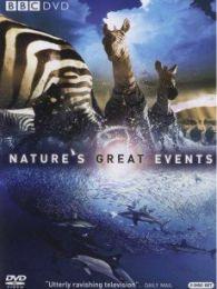自然界大事件5:大洪水(奥卡万戈爆发的大洪水)