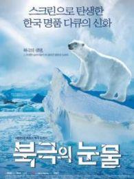 北极的眼泪(北极危机)