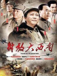 解放大西南(TV版)