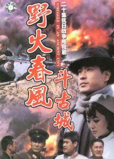 野火春风斗古城(1995)
