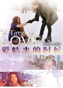 爱情来的时候 韩国篇 分集版