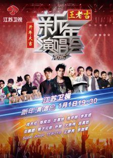 江苏卫视2015跨年演唱会