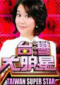 台湾大明星 2010
