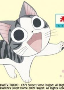 甜甜私房猫第2季