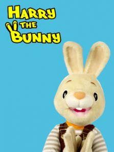 和兔子哈利学单词和数字 英文版