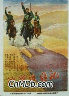沙漠追匪记(剧情片)