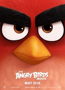 愤怒的小鸟(英语)