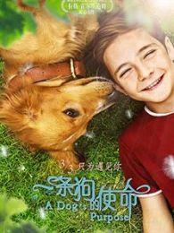 《一条狗的使命》 预告片