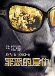 复仇(2008)