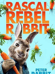 点击播放《比得兔》