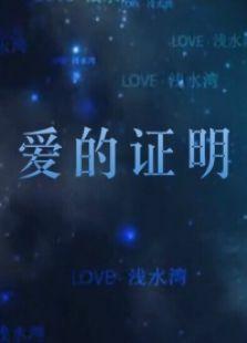 爱的证明(纪录片)