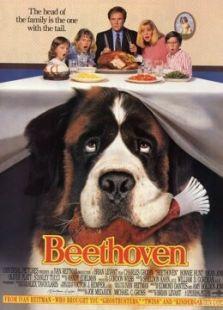 我家也有贝多芬
