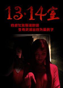 1314室(剧情片)