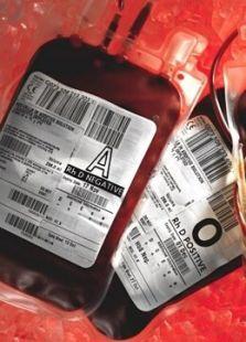 神奇的血液世界