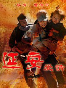 延安爱情DVD(国产剧)
