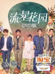 流星花园 DVD版(内地剧)
