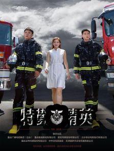 特勤精英DVD版