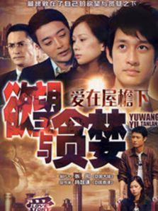 爱[2011] (国产剧)