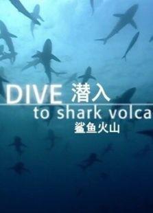 BBC:潜入鲨鱼火山