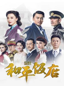 和平饭店 DVD版(内地剧)