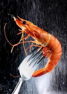 BBC:捕虾的价值