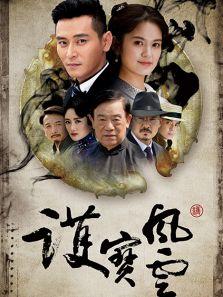 护宝风云(国产剧)