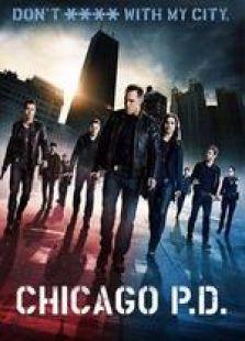 芝加哥警署第2季