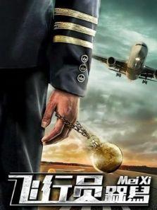 飞行员呆呆鸟