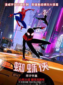蜘蛛侠平行宇宙