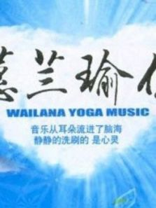 蕙兰瑜伽中级系列